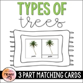 Types of Trees 3 Part Cards