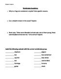 Types of Vertebrates Questions Worksheet- 3-5th grade