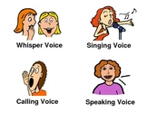 Types of Voices