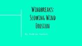 Types of Windbreaks slide show