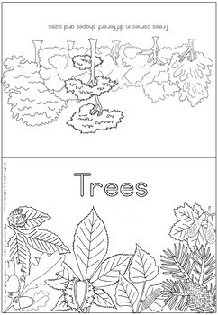 Types of tree coloring booklet