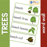 Types of tree word wall