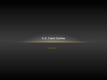U.S. Trial Court System Basics