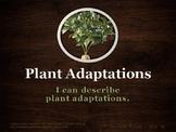 U14 D04 - Plant Adaptations (Variation and Adaptation unit)