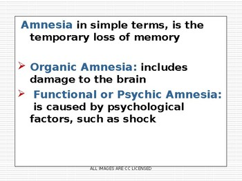 UK A-Level Memory: Brain Scanning and Amnesia Studies