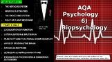 UK AQA A-Level Psychology: Year 1 BIOPSYCHOLOGY