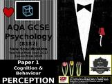 UK AQA GCSE Psychology PERCEPTION (8182) (Paper 1)