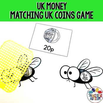 UK Coins Fly Swat