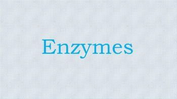 UNIT: Enzymes