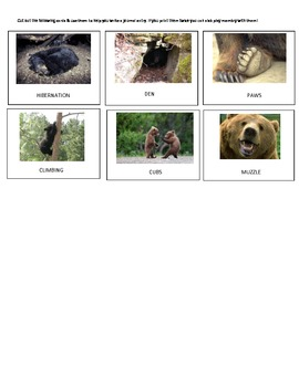 UNIT STUDY ON BEARS