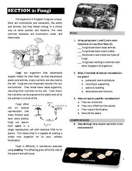 UNIT: Viruses & Simple Organisms