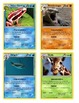 """UPDATED Animal Classification """"Pokemon"""" Cards"""