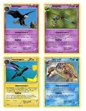 "UPDATED Animal Classification ""Pokemon"" Cards"