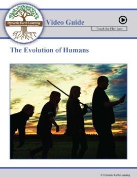 URBAN ECOLOGY: FuseSchool Biology Video Guide