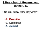 US Government Structure Notes, Graphic Organizer and Activity