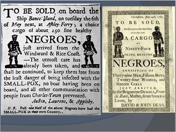 13 Colonies:PowerPoint:Slavery in the New World:   Trans-Atlantic_Slave_Trade
