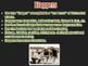 American Life in the Roaring Twenties PowerPoint Presentation (U.S. History)