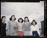 US History: Japanese Internment Primary Source Photograph Stations