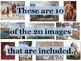 US History Primary Source Image Activity BUNDLE