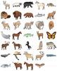 US State Animals Clip Art