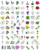 US State Birds and US State Flowers Clip Art BUNDLE