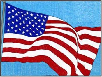 USA Flag Mural