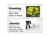 Ugly Vegetables Vocabulary Cards