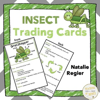 Insect Activities and Printables Bundle