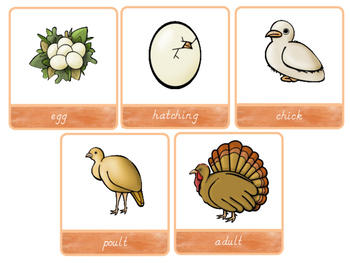 Ultimate Thanksgiving Early Learners Printables