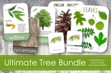 Ultimate Tree Bundle for Exploring Trees and Leaves- Montessori