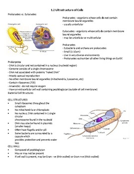 Ultrastructure of Cells student handout (IB biology topic 1.2)