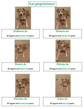 Las Preposiciones - Un Proyecto y Una Prueba - Spanish 1 & 2