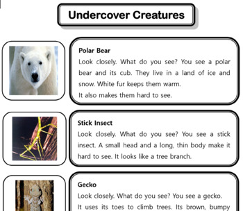 Undercover Animals - Animals that Apdapted to Hide in Plain Sight