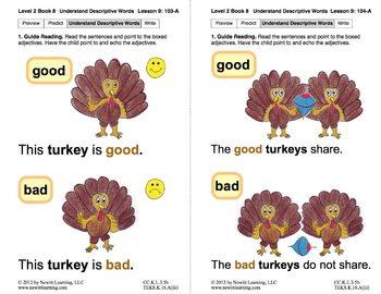 Understand Descriptive Words: Lesson 9, Book 8 (Newitt Prereading Series)