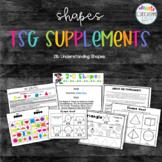 Understanding 2D and 3D Shapes  / TSG 21b/ Supplements