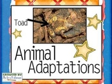 Understanding Adaptations and Survival!