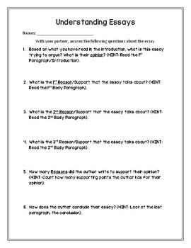 Understanding Essays Worksheet