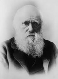 Understanding Evolution Guided Notes (Micro & Macroevolution, Charles Darwin)