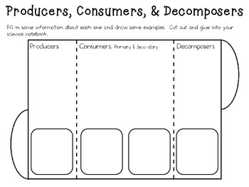 Understanding Food Chains ~ Interactive Science Notebook Pack