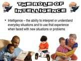 Understanding Learning & The Mind of a Toddler Powerpoint for Child Development