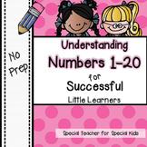 Understanding Numbers to 20  ***NO PREP***