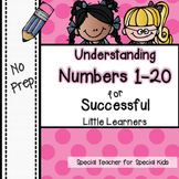 Understanding Numbers to 20  *NO PREP* | Distance Learning