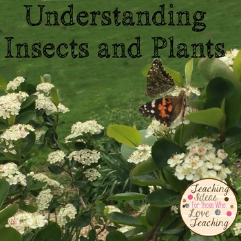 Understanding Insects and Plants