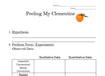 Understanding Qualitative and Quantitative Data