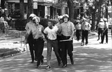 Understanding Race Riots. Civil Rights
