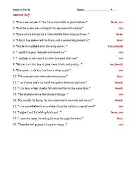 Understanding Sensory Words