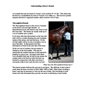 Understanding a Horse's Brands Fact Sheet