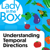 Understanding Temporal Directions with Lola and Friends-Bo
