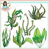 Underwater Plants Clipart