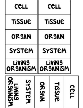 Uni and Multi Cellular Organisms